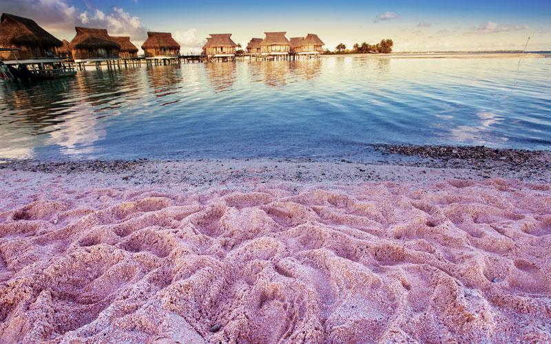 Pinker Strand Karibik